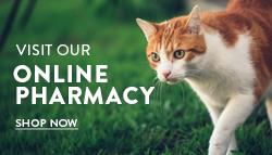 Our convenient Online Pharmacy